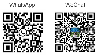 Scan QR Code of WhatsApp or WeChat